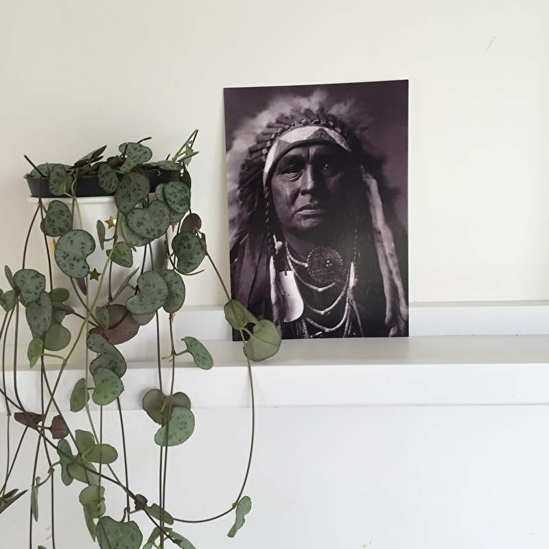 Kaart Indiaan crow warrior   Zoedt