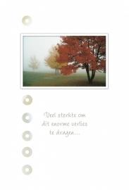 Memories - Vak 105