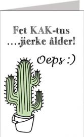 Friese kaarten Jillz/GH 11x17 - Vak 127