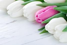 Floweressences - Vak 145