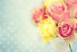 Floweressences - Vak 142