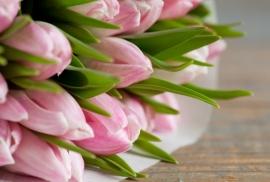 Floweressences - Vak 133