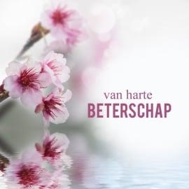 Blossoms postkaart - 130
