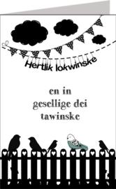 Friese kaarten Jillz/GH 11x17 - Vak 107
