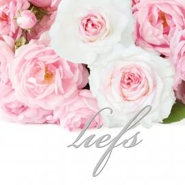 Blossoms 12x13,5 cm - Vak 132