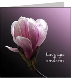 Condoleance & Troost 15x15 cm - Vak 106