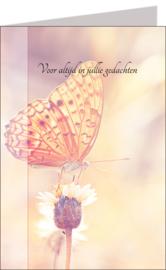 Butterflies 11x17 cm - Vak 107