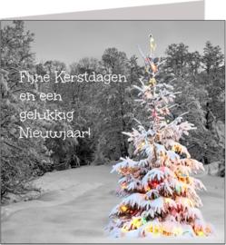 Kerstkaarten - Vak 117