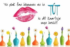 Postkaarten Friese teksten - Vak 112