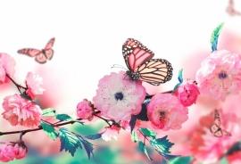 Blossoms - 123