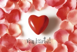 Heart Beat - Vak 114