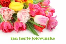 Postkaarten Friese teksten - Vak 126