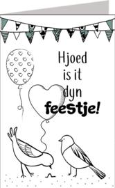 Friese kaarten Jillz/GH 11x17 - Vak 122