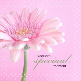 Blossoms postkaart - 134