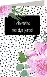 Friese kaarten Jillz/GH 11x17 - Vak 112
