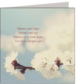 Condoleance & Troost 15x15 cm - Vak 125