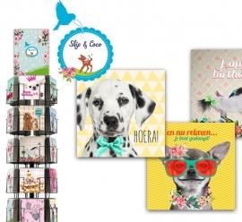 Skip en Coco 15x15cm hele serie incl. display, topkaart, backcards