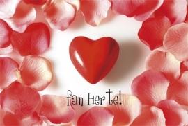 Heart Beat Fries - Vak 114