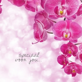 Blossoms postkaart - 128
