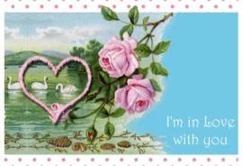 Valentijn 11x17 cm liggend- Vak 141