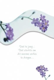Memories - Vak 118