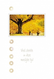 Memories - Vak 101