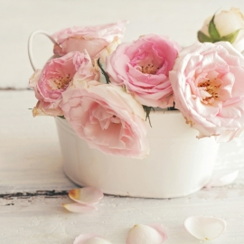 Blossoms postkaart - 131
