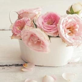 Blossoms 12x13,5 cm - Vak 131