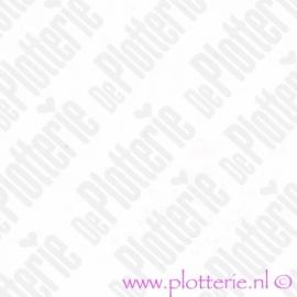 Wit / White M300 - Ritrama® M300 Serie - Mat Vinyl