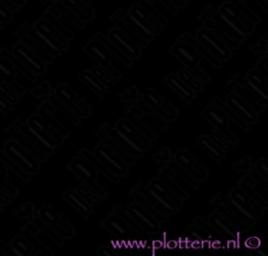 Zwart / Black M301 - Ritrama® M300 Serie - Mat Vinyl