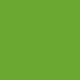 Lime Groen / Lime-tree Green 063 - ORACAL® 641 serie - Mat Vinyl