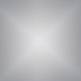 Siser P.S. Electric  Flex - E0021 Silver (Zilver)