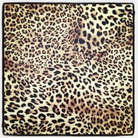 Leopard Print - Fashion Flex (Poli-Tape)