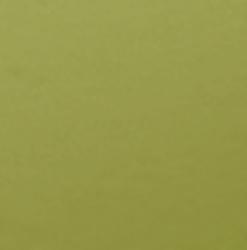 Olijf Groen / Olive 493 - ORACAL® 631 serie - Mat Vinyl