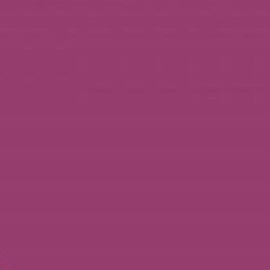 Violet - Glans Vinyl