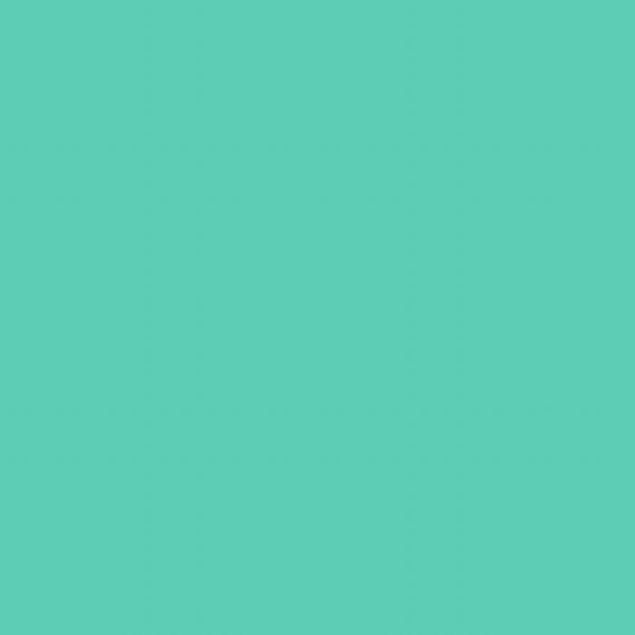 Mint Groen - Glans Vinyl