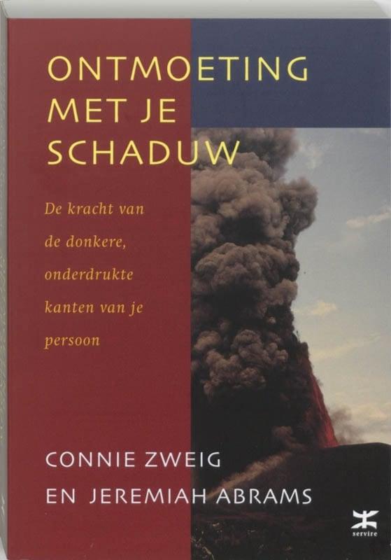 Ontmoeting met je schaduw - Connie Zweig en Jeremiah Abrams
