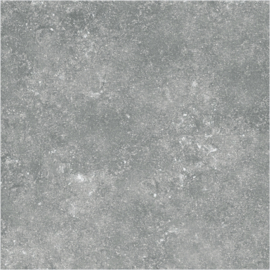 Fusion Grey  60x60cm, dikte 20mm