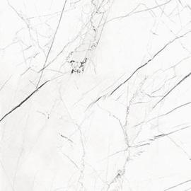 Pandora polished 98x98cm