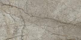 Sonante Tortora glans gepolijst 30x60cm