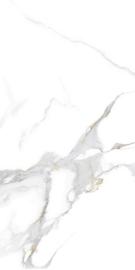 Domus bianco Polished 30x60cm