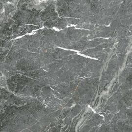 Magnifique grey  polished 120x120cm