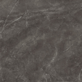 Bayona grey Naturel 120x120cm