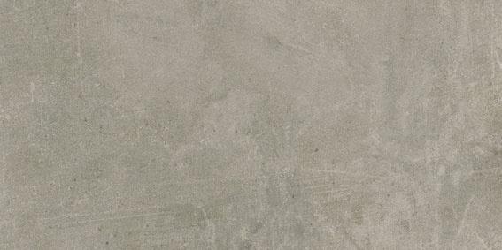 Evo Grey 30x60cm
