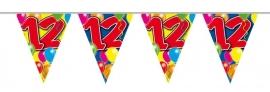 Vlaggenlijn, Slinger Balloons 12 Jaar /10Mtr