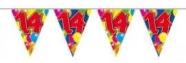 Vlaggenlijn, Slinger Balloons 14 Jaar /10Mtr
