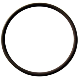 O-ring small brew head Ascaso DUO Prof