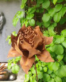 Flower artisjok