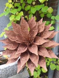 Rusty flower 287