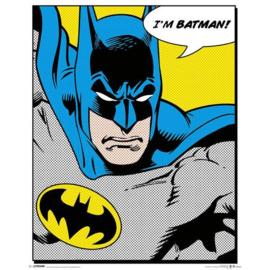Batman Mini Poster